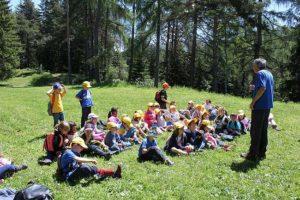 Zielone szkoły w Górach świętokrzyskich